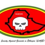 SAGE Ethiopia _ call for action