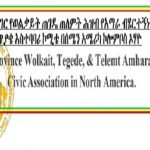 Wolkait Gondar _ Committee